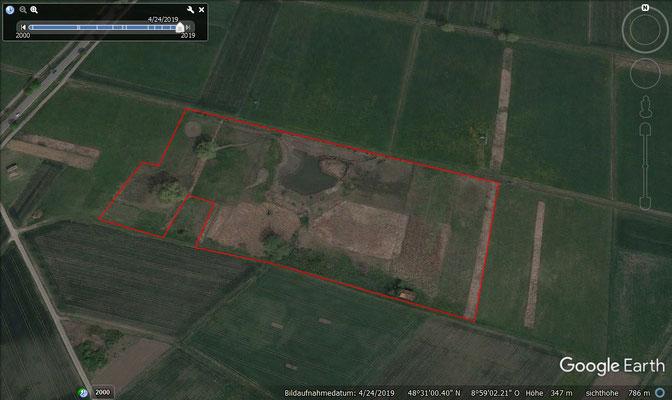 Projektgebiet im Jahr 2020 (4,5 Hektar)