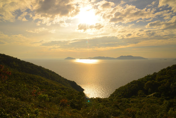 Trat Viewpoint
