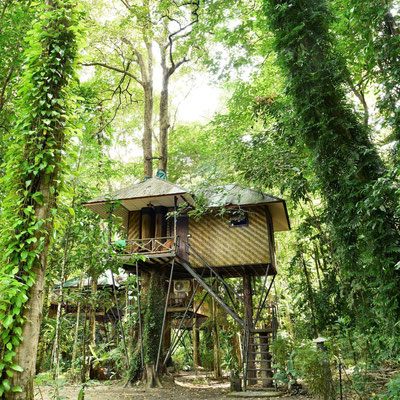 Tree House at Khao Sok Nature Resort