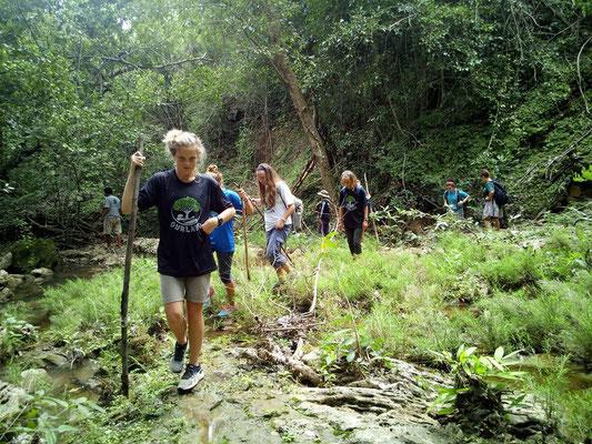Jungle Trekking around Kanchanaburi