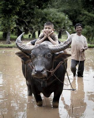 Local farmers life