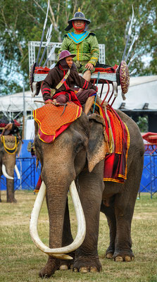 The Isaan region is proud of its heritage and their ability to tame Elephants
