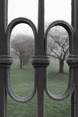 Spätherbst im Schlossgarten Schwetzingen