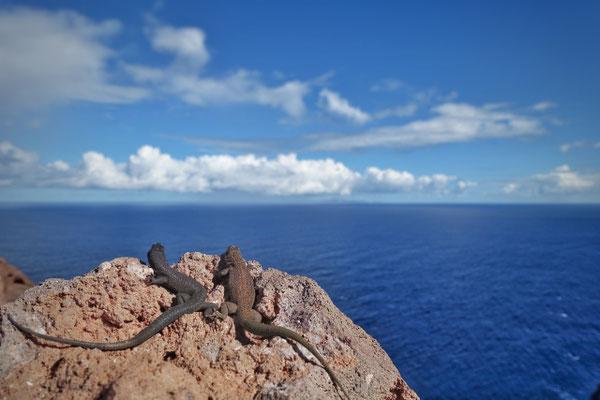 An der Ostspitze Madeiras