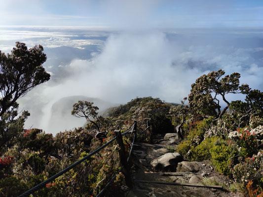 Wanderung am Mount Kinabalu, Sabah, Borneo, Malaysia