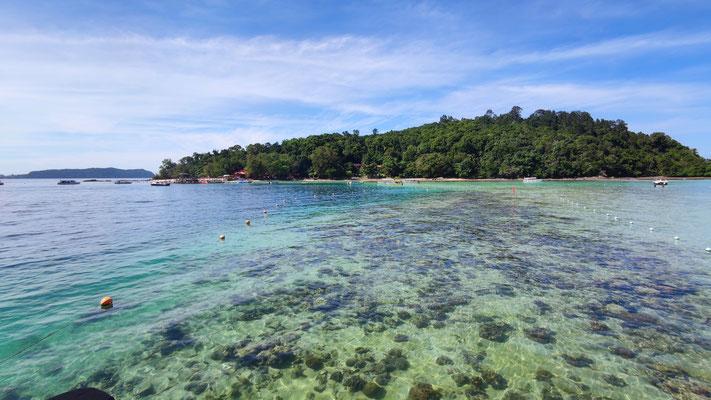 Riff vor Sapi Island im Tunku Abdul Rahman Park, Sabah, Borneo