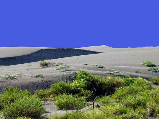 Pazifikküste bei Los Rabanos