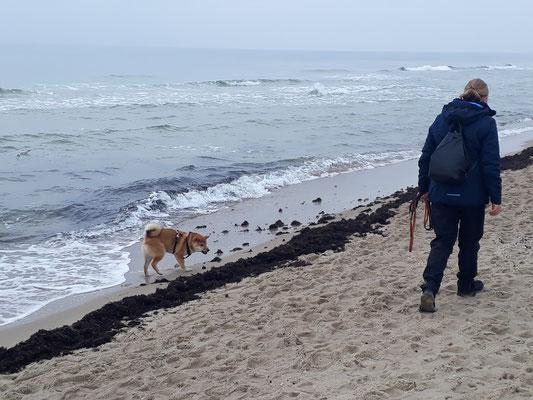 Am Strand mit meinen Leuten
