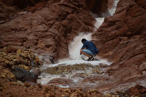 Tarik sammelt eine Portion Salz ein