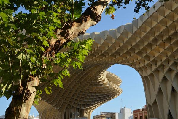 Monopol Parasol, die größte Holzkonstruktion Europas