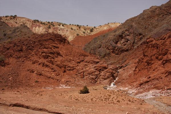 einige Bäche spülen das Salz aus dem Gestein und hinterlassen beim Verdunsten eine dicke Salzschicht