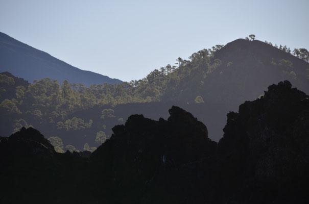 und noch einmal beim Teide, wir fahren quer durch die Caldera bis nach La Orotava, dieses Mal gibt es keine Wolkenbänke und wir sehen Landschaften, die sonst oft im Nebel liegen