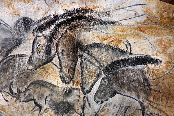 Wir besuchen die Caverne du pont'arc in der über 30000 Jahre alte Felszeichnungen rekonstruiert sind.