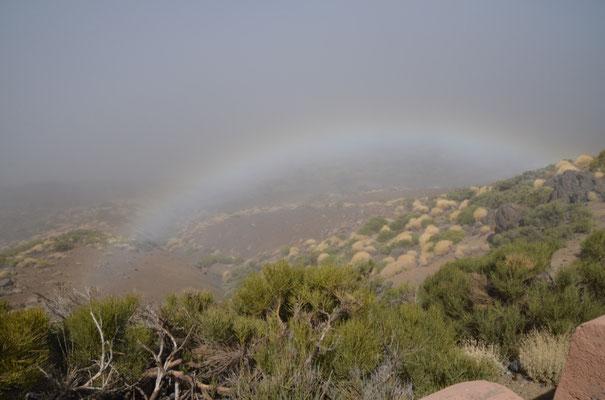 Blick von oben auf einen Regenbogen