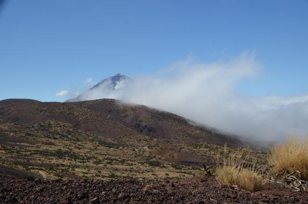 Die Wolken halten sich heute hartnäckig, erst kurz vor der Caldera haben wir den ersten Blick auf den Teide.