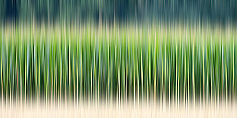 Grenzgang 2 · 120 x 60 cm · Leinwand auf Keilrahmen: € 490,- · Aludibond: € 610,- · Acrylglas auf Aludibond: € 750,-  · © Karena Kanamüller