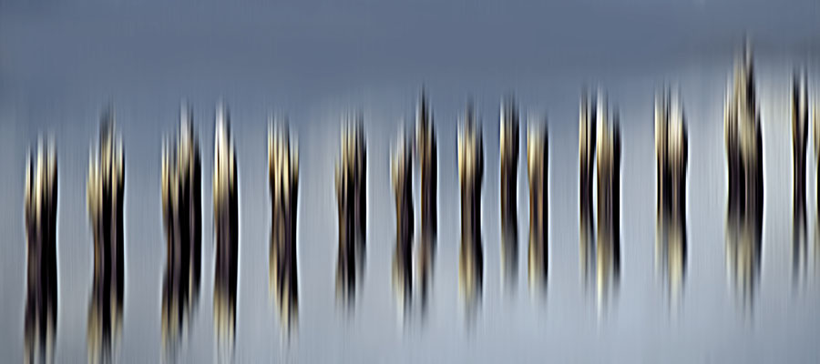 Grenzgang 3 · 180 x 80 cm · Leinwand auf Keilrahmen: € 890,- ·  Aludibond: € 1.120,- €  · Acrylglas auf Aludibond: € 1.360,-  · © Karena Kanamüller