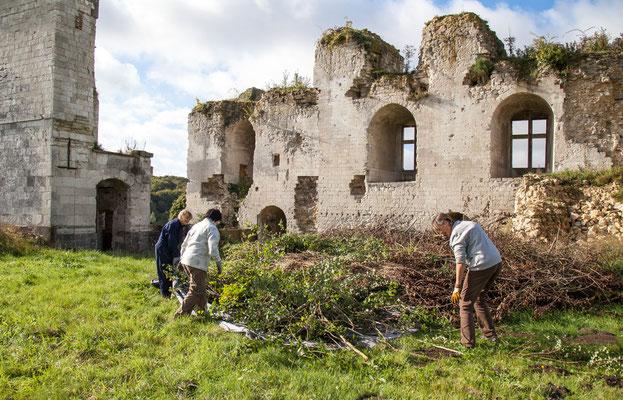 Château de Picquigny, Taille de la grande haie devant le château. Un grand tas... à brûler !