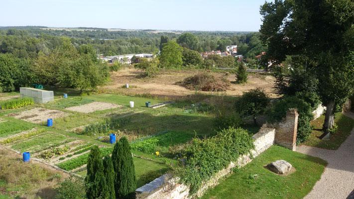 Le jardin du fond au dessus du rempart  est défriché, château de Picquigny