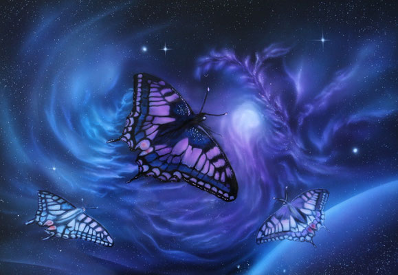 Schmetterlinge auf Alu Dibond Platte