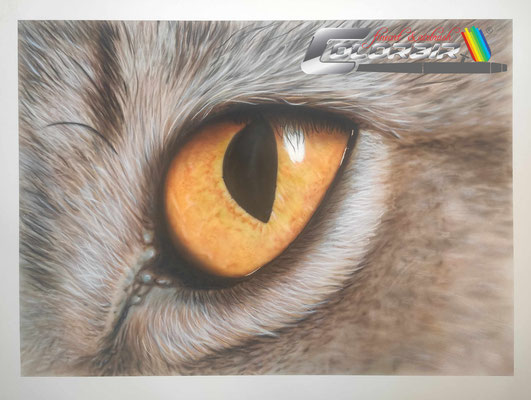 Katzenauge Kunst Malerei