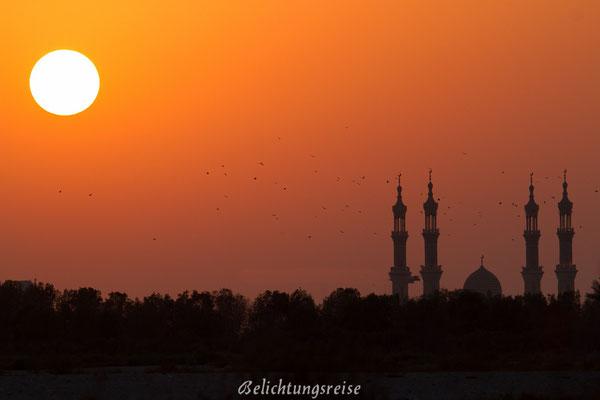 Mosque Shaikh Zayed