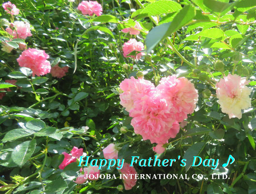 ♔ 父の日 ♪ Happy Father's Day!