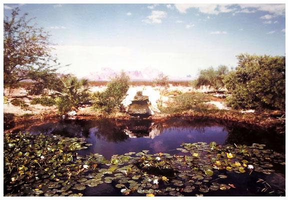 ♔ 旧 オブライエン邸 於: アリゾナ州ハクアハラヴァレー 弊社代表 渡邊洋 撮影