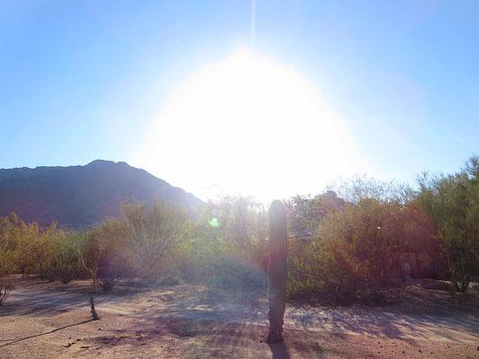♔ アリゾナ州パラダイスバレー