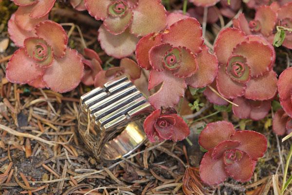 #ring #silverring #jewellery #artjewellery #yiking