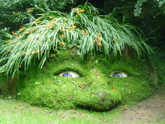 Lost-Gardens-of-Heligan