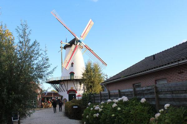 Die Pfannenkuchenmühle in Burgh-Haamstede...mhhmmm...lecker!