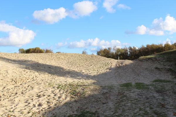 Naturschutzgebiet Zeepeduinen