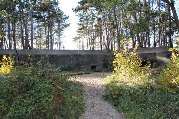Der Wal - der große Bunker in Burgh-Haamstede