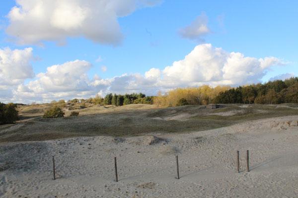 Naturschutzgebiet Zeepeduinen - Blick auf die kleinen Bunker
