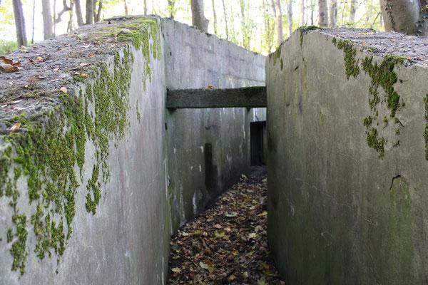 Bunker mitten im Wald