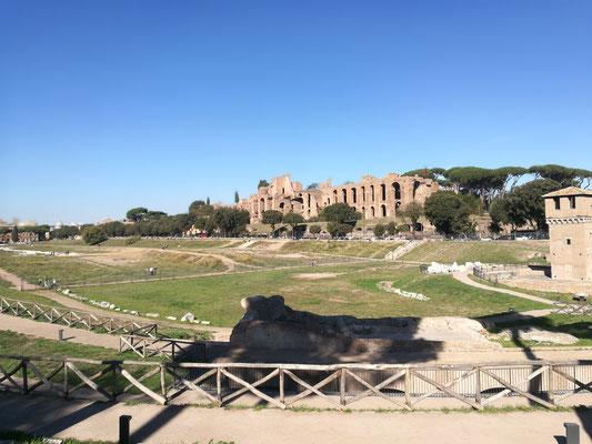 Circus Maximus mit Blick auf das Palatino