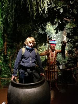 Im Kuriositätenmuseum - Leo im Topf