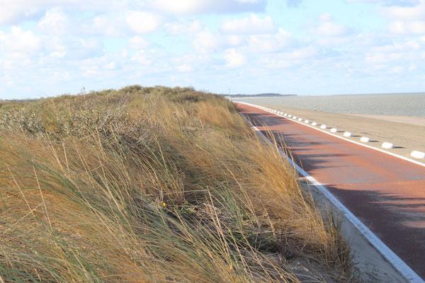 Fahrradweg mit Gegenwind