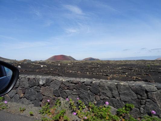 Vulkangestein pur