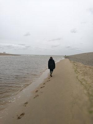 Einsamer Wanderung - an einer der vielen Rheinmündungen
