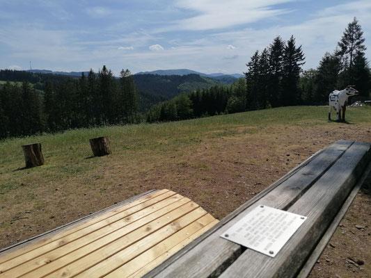 Schwarzwald | Hausacher Bergsteig | Bank des Lebens mit Ausblick