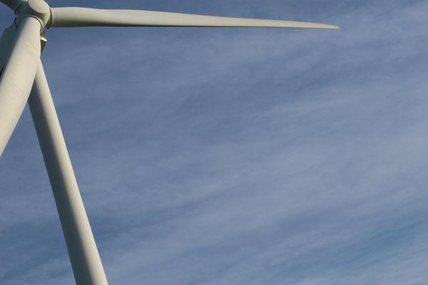 Windräder prägen das Bild Zeelands