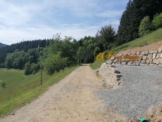 Schwarzwald | Hausacher Bergsteig | Rastplatz mit Aussicht