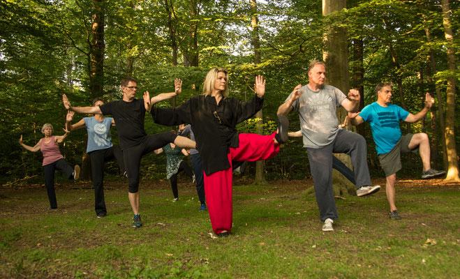 Tai Chi im Wald 3 - Centrum für Tai Chi, Qi Gong, Yoga und Körperarbeit