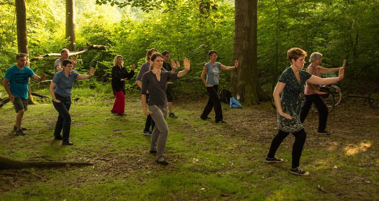 Tai Chi im Wald 2 - Centrum für Tai Chi, Qi Gong, Yoga und Körperarbeit