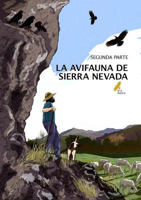 Segunda parte: La avifauna de Sierra Nevada