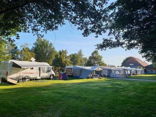 Morene Hoeve - camping in de ochtend