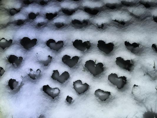 Sculpture métal sous la neige : Dauphine © Michel LAURENT