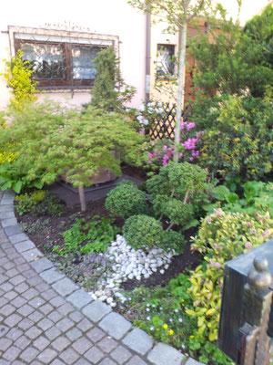 Rückschnitt Gartenpflege Rübner